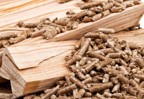 Biomasse Heizungen
